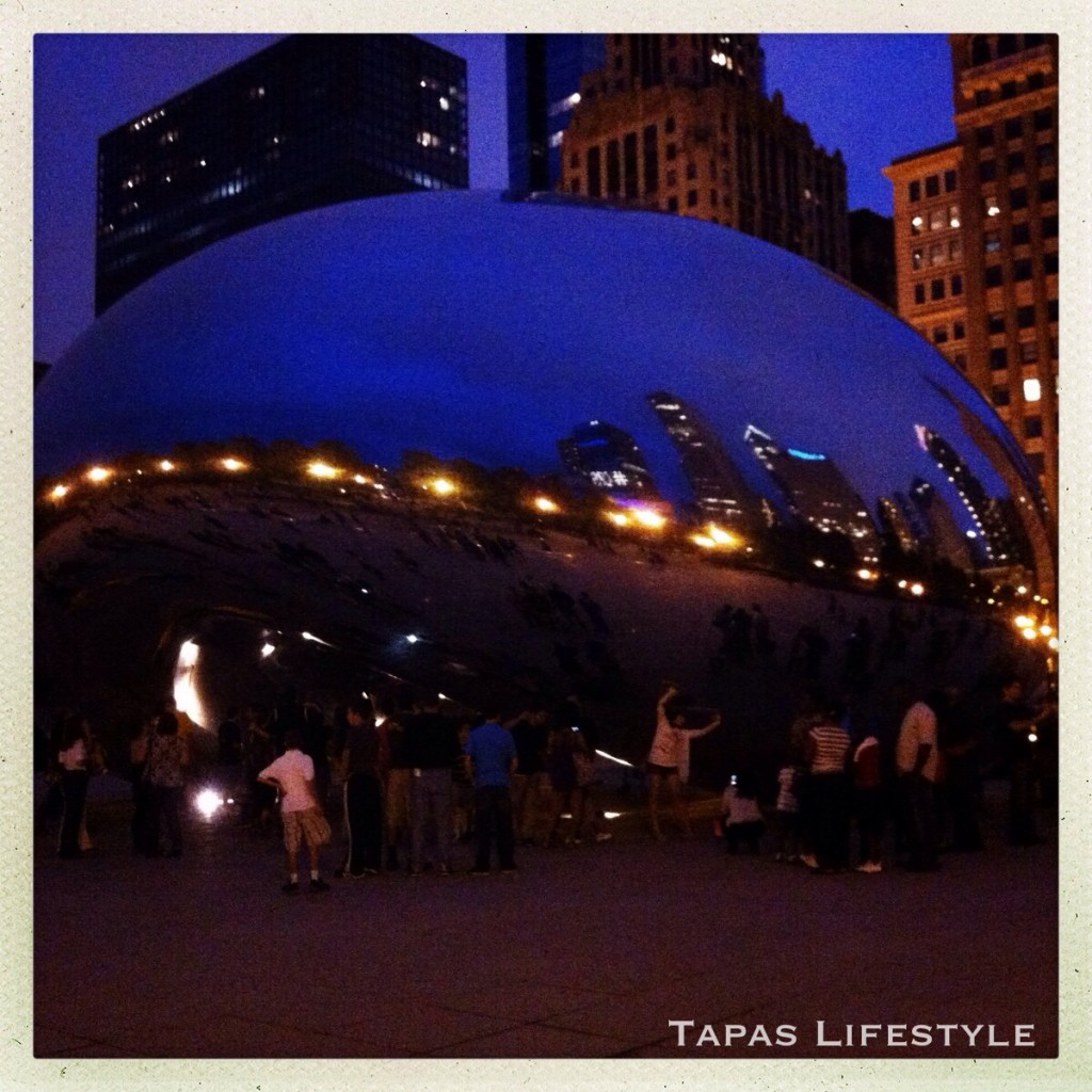 Cloud Gate in Millennium Park in Chicago - night