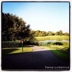 A view of the Seminole Wekiva Trail on my outdoor run.
