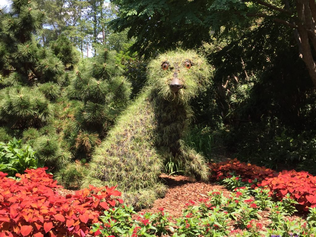 Shaggy Dog - Imaginary Worlds - Atlanta Botanical Gardens
