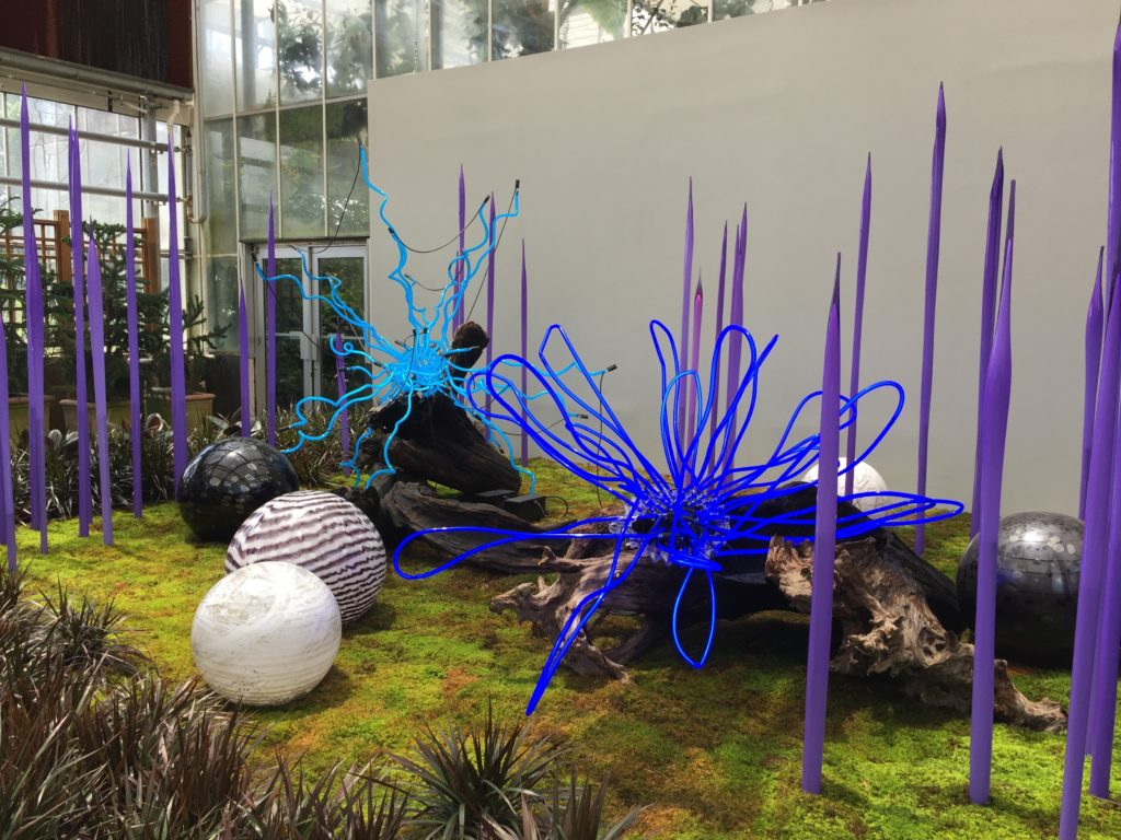 Sapphire Neon with Neodymium Reeds, Floats, and Logs 2015 - Dale Chihuly - Atlanta Botanical Gardens Installation No. 17